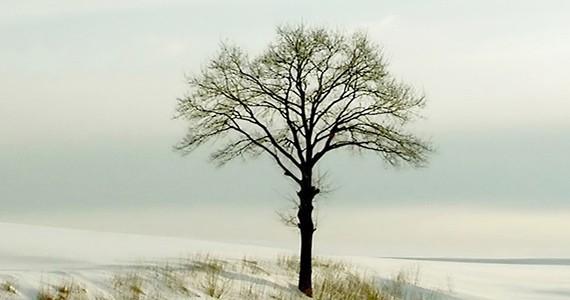 Seasonal Health